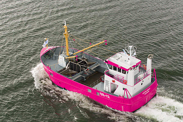 The Tindals ore is processed at Focus Minerals' Three Mile Hill Processing plant, located 5km away from the mine site. Image courtesy of Focus Minerals Pty Ltd.