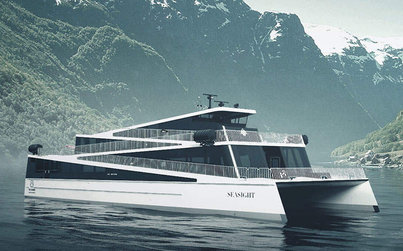 The Watermark coal project is expected to translocate 262 koalas over 30 years of mining. Image: courtesy of David Iliff.