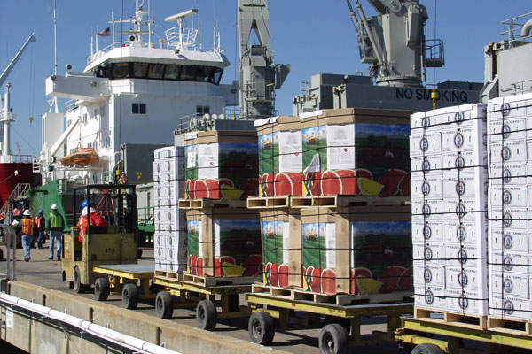 The New Mine Level Project at El Teniente will deploy automation technologies for loading and hauling. Image: courtesy of Codelco.
