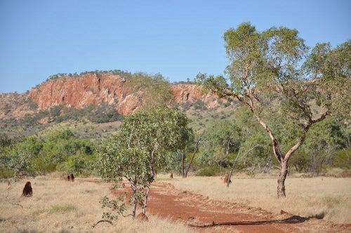 Roseby, Australia